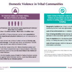 Domestic Violence in Tribal Communities charts